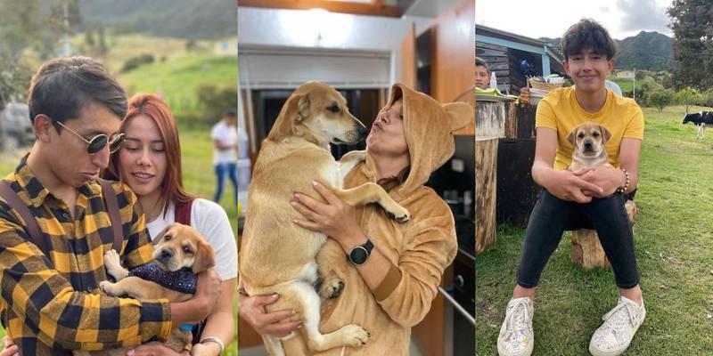 Egan Bernal denuncia que mataron envenenado al perro de su familia
